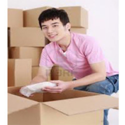 Households Shifting, Capacity / Size Of The Shipment: 1 - 6 Ton