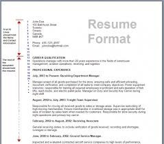resume writing services in lucknow