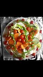 Routine Diet