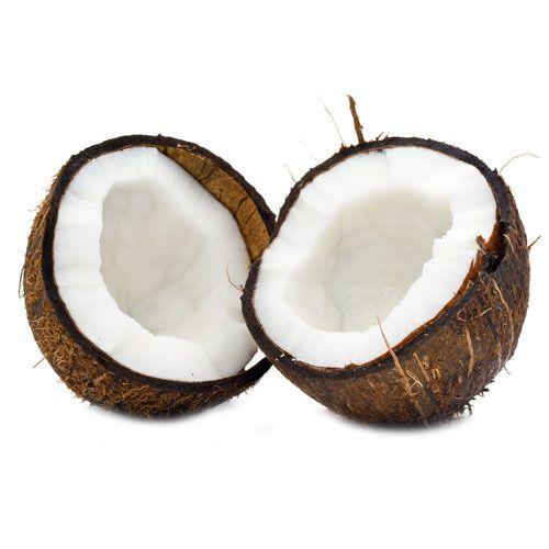 Coconut - Wholesale Price for Nadia in India