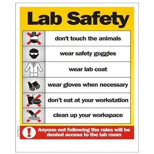 Safety Precautions Poster At Rs 100 Square Feet
