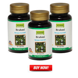 Herbal Products for Brain Care