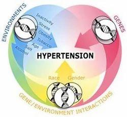 Hypertension Management Programs