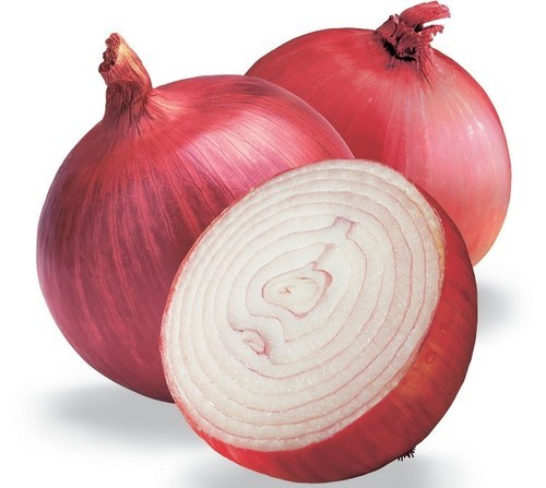 Red Onions - View Specifications & Details of Red Onion by