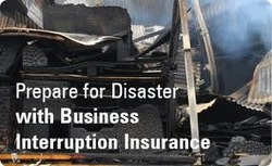 Business Interruption & Natural Disaster