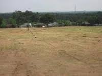 Commercial Plots Dealing Services