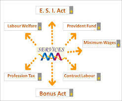The Contract Labor Act 1970 Services