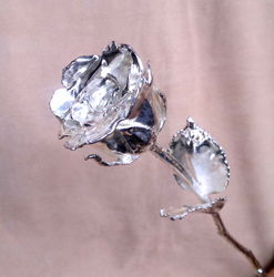 Silver Plated Natural Real Rose