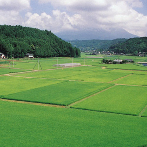 Agricultural Properties in India
