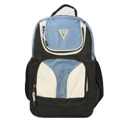 Travel Voyaguer Backpack