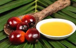 Palm Oil Testing