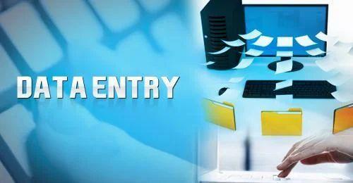 Data Entry Service in Kolkata, Behala by Baboon Labs India Pvt. Ltd. | ID:  9361499555