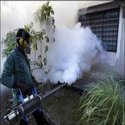 Fogging For Mosquito Controls
