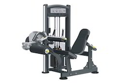 Viva Seated Leg Curl IT9006-IT9306