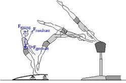 Physics of Gymnastics