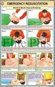 Emergency Resuscitation Charts