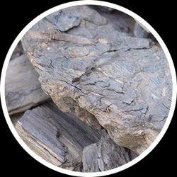 GMDC Lignite (Rajpardi/Tadkeshwar)