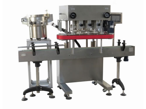 Capper Machine For Bottle - Linear Screw Capping Machine Manufacturer from  Ahmedabad