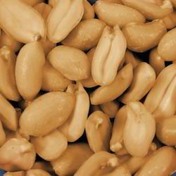 Dry Roasted Peanut