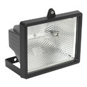 Halogen Flood Light