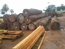5 to 9 feet up Red Okan Wood Logs