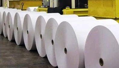 Parent Rolls Facial Tissue White Jumbo Roll 100
