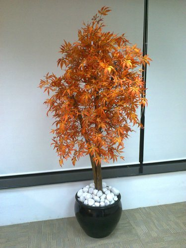 artificial plants upto 3ft - artificial ficus tree wholesaler from 3 Ft Artificial Plants