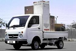 Domestic Transportation Services