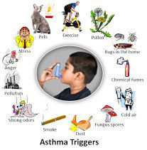Asthma Treatment & Prevention