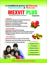 Mexvit-Plus