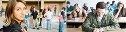 Chartered Accountancy Programme