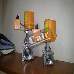 Electrically Actuated Valve