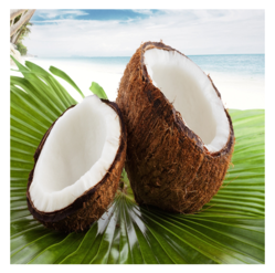 Coconut in Madurai - Latest Price & Mandi Rates from Dealers