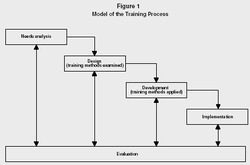 Training & Development Systems and Procedures
