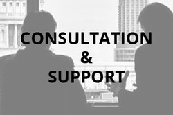 Web Consultation and Support Service