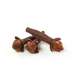 Clove Seed/LONG/Syzgium aromaticum