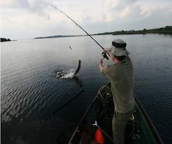 Island Camping And Angling Adventure Tour