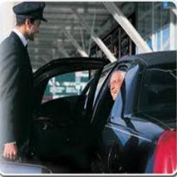 Driver Manpower Service Manpower Solution Down Town Solution