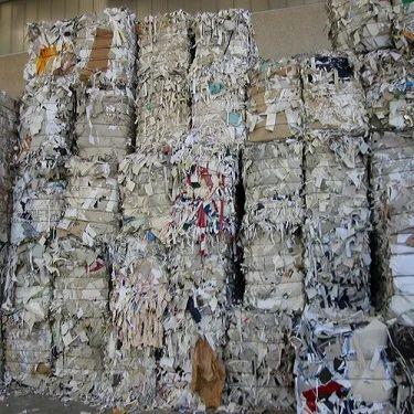 Waste paper buyers in dubai | College Essay Writer Site