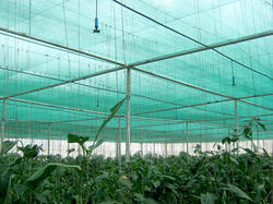 Greenhouse Shading In Pune Maharashtra Shade Net House