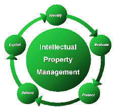 Intellectual Property Rights And Constitution Of India