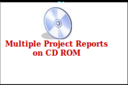 Cd Rom Project Report Consultancy