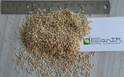 Earth Expo Company Natural White Sesame Seeds, Pack Size: 10 Kg, 20 Kg
