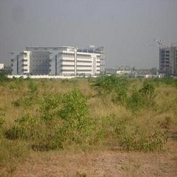 Industrial Property Consultancy