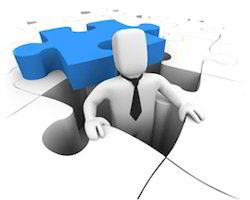 Software Integration & Management