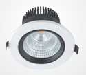 Ceiling LED COB Down Light Nimble