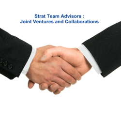 Joint Venture and Collaboration Matchmaking Service