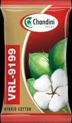 Hybrid Cotton Seed
