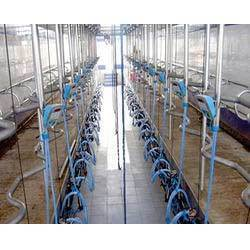 Vansun Swing Over Milking Parlour