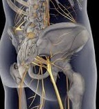 Sciatica Treatment